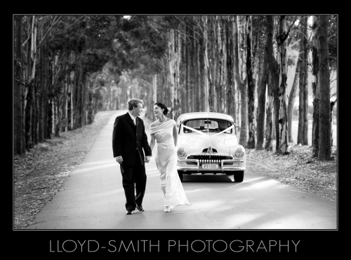 Margaret River Wedding at Vasse Felix